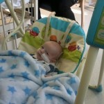 Braveheart Kain relaxing in his new musical swing